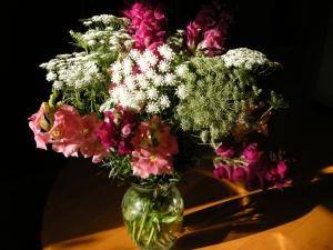 White Ami majus and pink snap dragons.