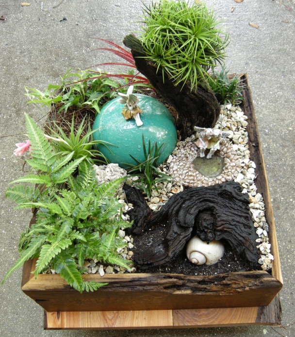 First draft. Miniature limestone and shells as ground cover with fine pine needles in the back.