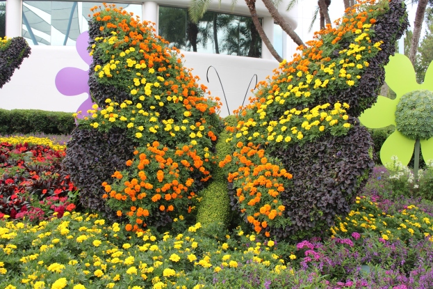 Butterfly made with butterfly plants.