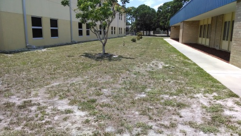 Courtyard facing west.