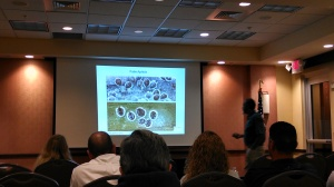 Stephen Brown teaching about palm aphids that look like scale insects.