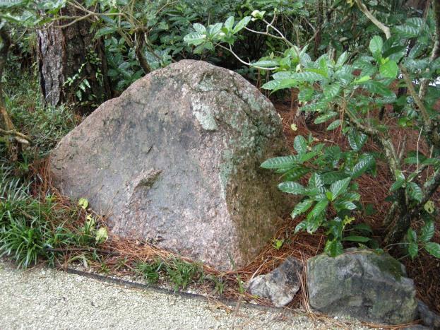rocks (4)