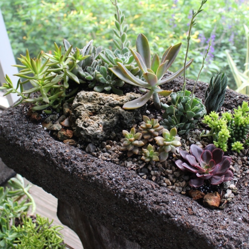 To add to the dry scene I included rocks.