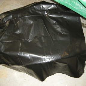 Cover with plastic for a day to cure.