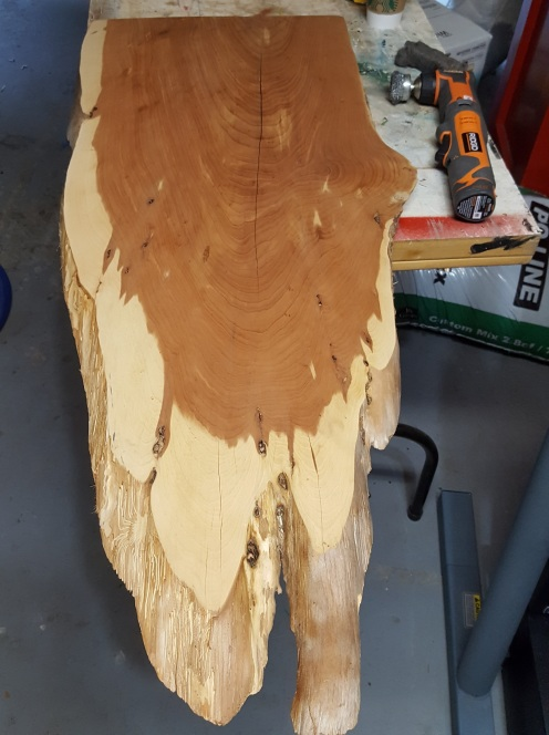 """Florida Red Cedar slab: 1"""" thick 17"""" wide, 4' long. I counted about 70 rings."""