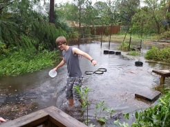 Our son John wading through our back yard.