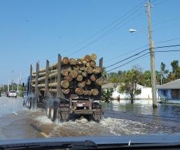 Power poles rolling through Bonita Springs.