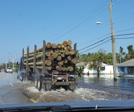 Power poles rolling through Bonita Springs.