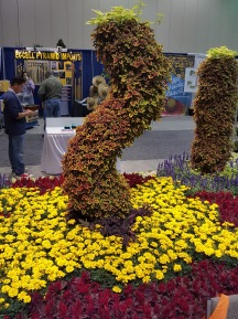 Marigolds and Coleus pillar.