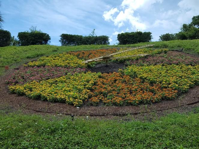 Massive flower clock planted with dwarf zinnias.