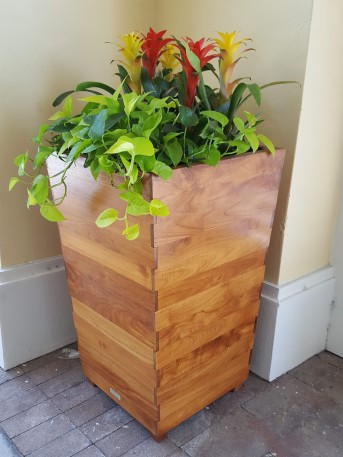 Nice planters at the entrance.