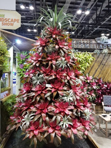 Bullis Bromeliads created a spectacular bromeliad tree.